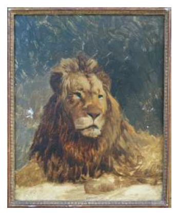 animal7.PNG - 286.93 Ko