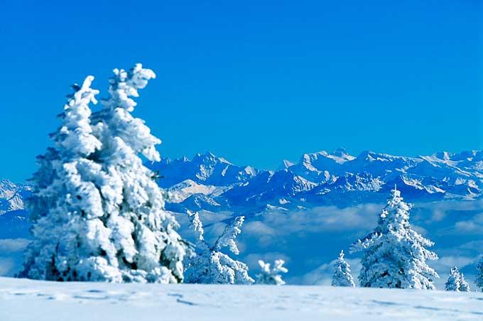 ski.jpg - 36.49 Ko