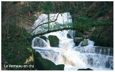 verneau.jpg - 30.68 Ko